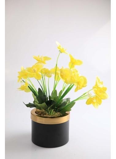 Kibrithane Çiçek Yapay Çiçek Metal Saksı Mini Sarı Kumaş Orkide Kc00200797 Renkli